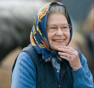 Про британских старушек….